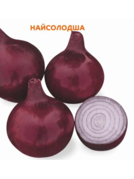 Divina F1 - Семена лука озимого, Cora Seeds, 250 000 семян