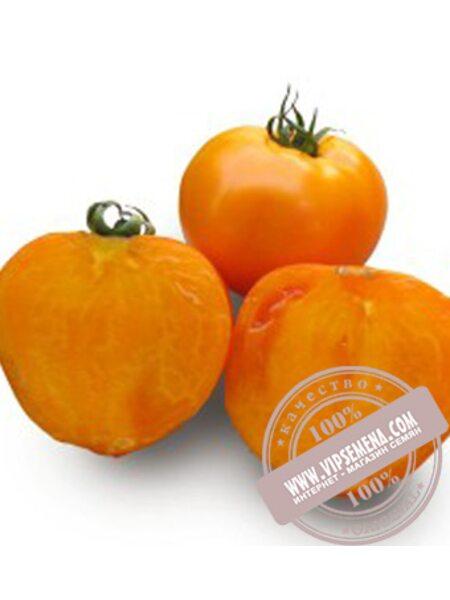 Айсан F1 семена томата детерминантного Kitano Seeds, оригинальная упаковка (1000 семян)