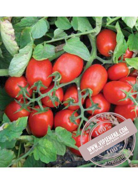 3402 F1 семена томата детерминантного Lark Seeds, оригинальная упаковка (100000 семян)