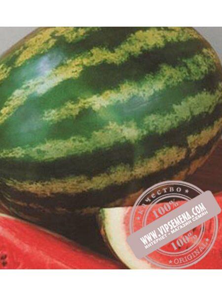 АУ-Продюсер (AU-Produsеr) семена арбуза Lark Seeds, оригинальная упаковка (500 грамм)