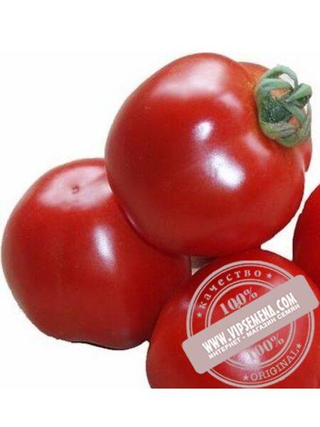Шаста F1 (Shasta F1) семена томата детерминантного Lark Seeds, оригинальная упаковка (1000 семян)