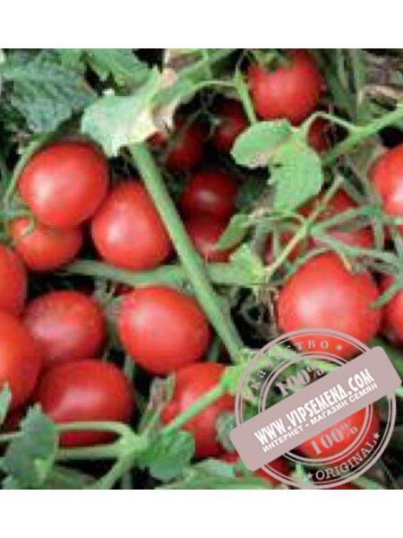 Шкипер F1 (Shkiper F1) семена томата детерминантного Lark Seeds, оригинальная упаковка (1000 семян)
