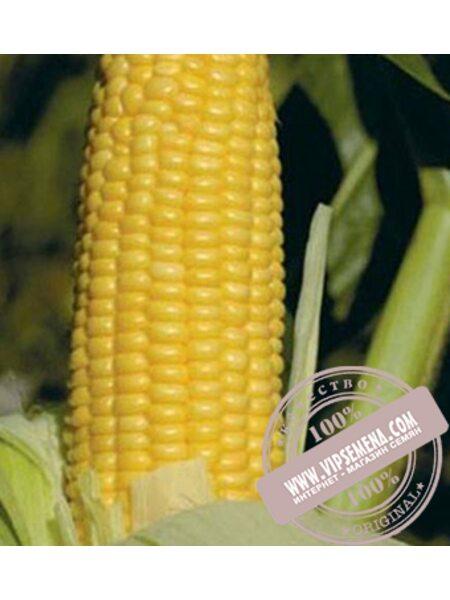 Уокер F1 (Woker F1) семена кукурузы сахарной Lark Seeds, оригинальная упаковка (2500 семян)
