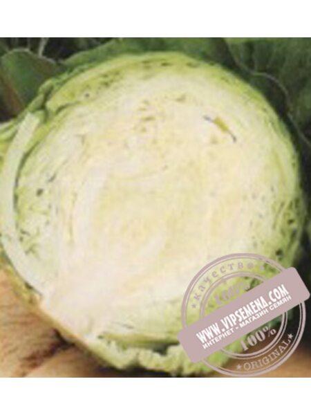 Кандиша F1 (Kandisha F1) семена капусты белокочанной Sakata, оригинальная упаковка (1000 калиброванных семян)