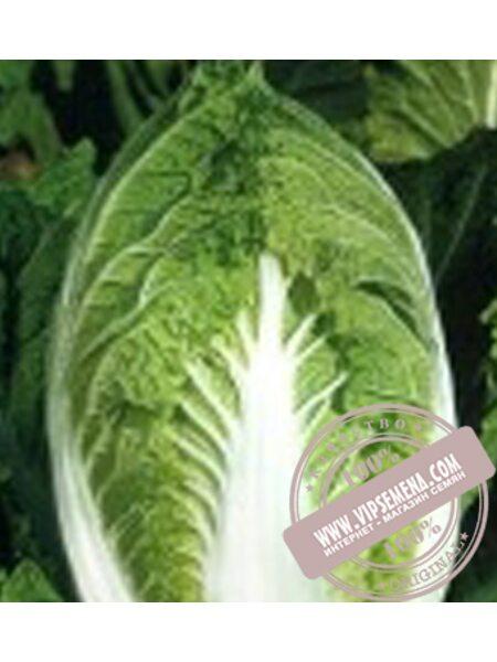 Юки F1 (Yuki F1) семена капусты пекинской Sakata, оригинальная упаковка (1000 семян)