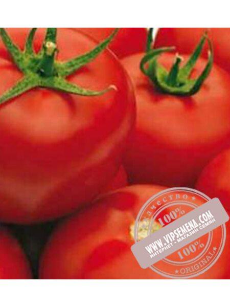 Гравитет F1 (Gravitet F1) семена томата полудетерминантного Syngenta, оригинальная упаковка (500 семян)