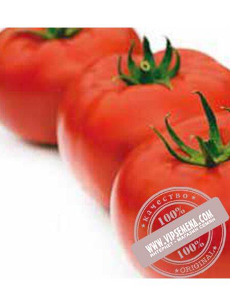 Царин F1 (Tsarine F1) семена томата индетерминантного Syngenta, оригинальная упаковка (500 семян)