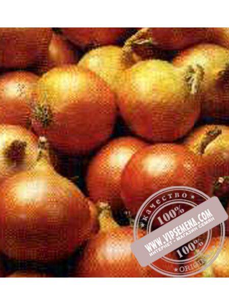 Мундо (Myndo) семена лука репчатого Syngenta, оригинальная упаковка (250000 семян)