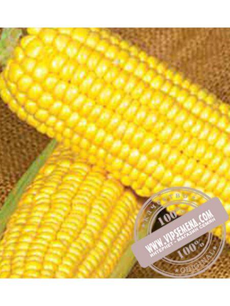 Оверленд F1  (Overland F1) семена кукурузы сладкой Syngenta, оригинальная упаковка (1 кг.)