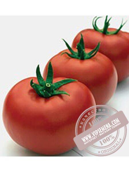 Тривет F1 (Trivet F1) семена томата полудетерминантного Syngenta, оригинальная упаковка (500 семян)