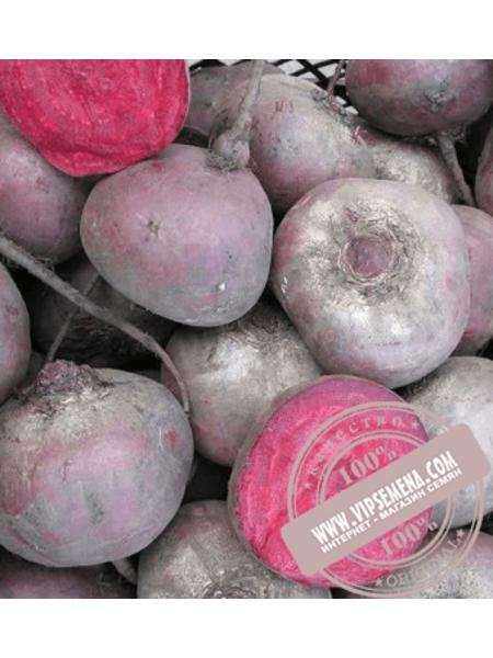 Бебибит (Babybeat ) семена свеклы столовой округлой Rijk Zwaan, оригинальная упаковка (100000 семян) PR