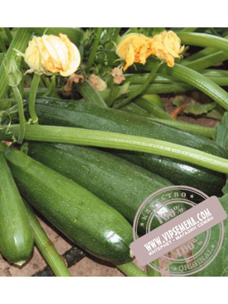 Дуня F1 (Dunya F1) семена кабачка типа цукини Enza Zaden, оригинальная упаковка (500 семян)