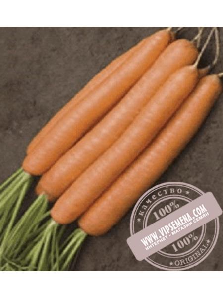 Джерада F1 (Jerada F1) Ǿ 1.4-1.6 семена моркови типа Нантес Rijk Zwaan, оригинальная упаковка (1 млн семян)