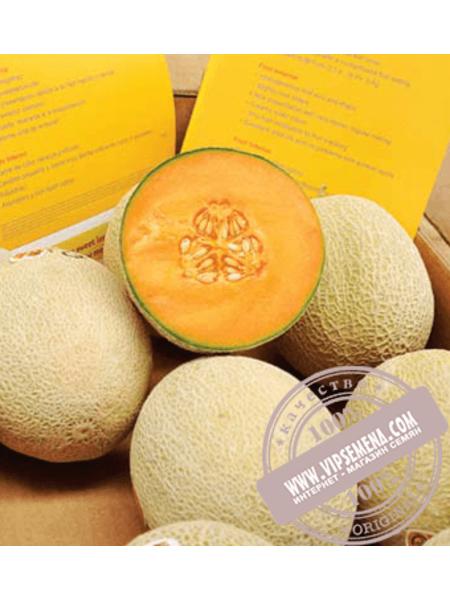 Карибиан Голд F1 (Carribean Gold F1) семена дыни типа Харпер Rijk Zwaan, оригинальная упаковка (100 семян)