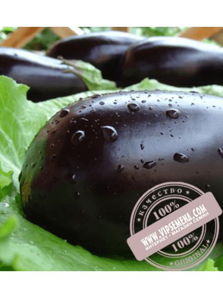 Мабел F1 (Mabel F1) семена баклажана Enza Zaden, оригинальная упаковка (500 семян)