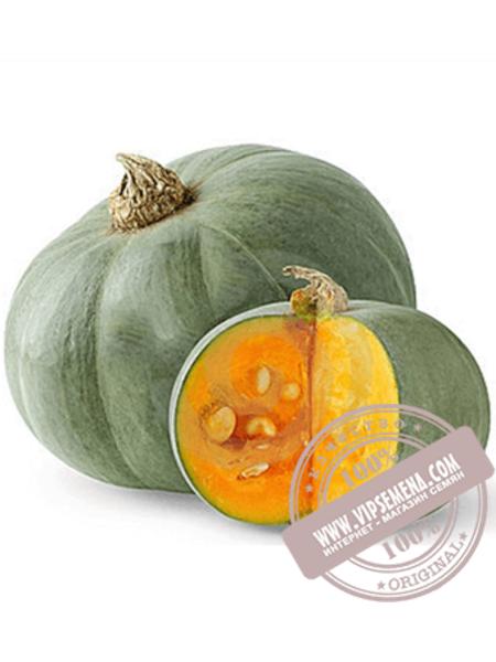 Сампсон F1 (Sampson F1) семена тыквы типа Серая тыква Enza Zaden, оригинальная упаковка (500 семян)