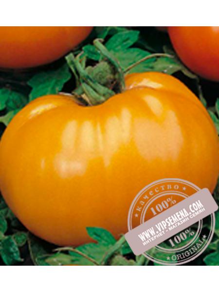 Апельсин (Apelsin) семена индетерминантного томата Элитный Ряд, оригинальная упаковка (250 грамм)