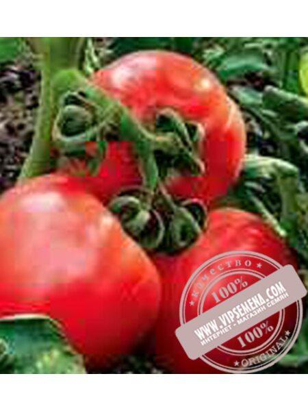 Гайдук F1 (Gaiduk F1) семена полудетерминантного томата Элитный Ряд, оригинальная упаковка (1000 грамм)