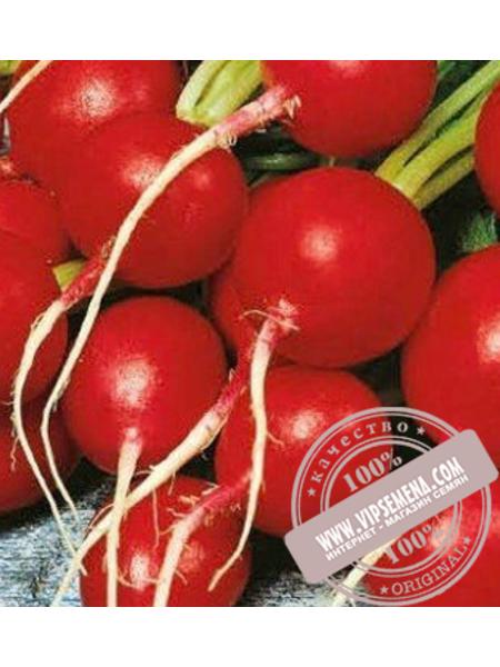 Кармен (Karmen) семена редиса Элитный Ряд, оригинальная упаковка (1000 грамм)