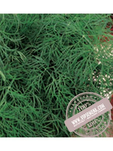 Салют (Salyt) семена укропа Элитный Ряд, оригинальная упаковка (250 грамм)