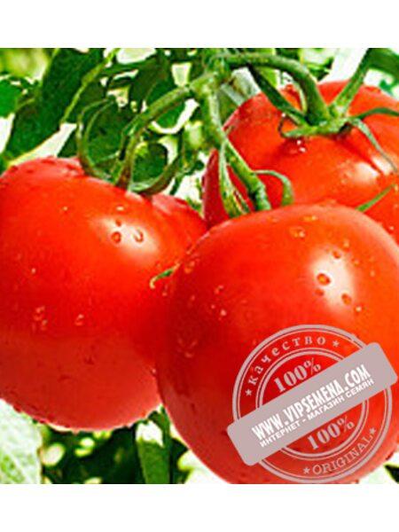 Санька (Sanka) семена детерминантного томата  Элитный Ряд, оригинальная упаковка (250 грамм)