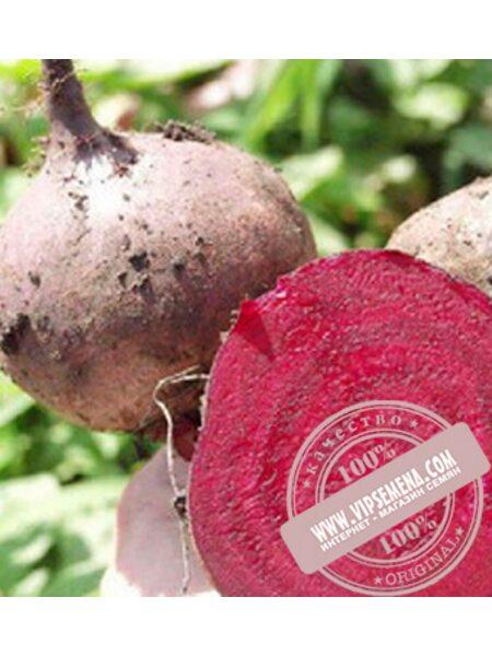 Бикорес (Bikores) семена свеклы столовой Bejo, оригинальная упаковка (10000 семян прецизионные)