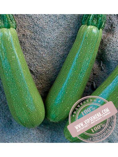 Мостра F1 (Mostra F1) семена кабачка, Clause, оригинальная упаковка (500 семян)
