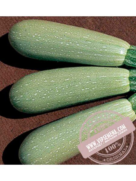 Асма F1 (Asma F1) семена кабачка, Clause, оригинальная упаковка (2500 семян)