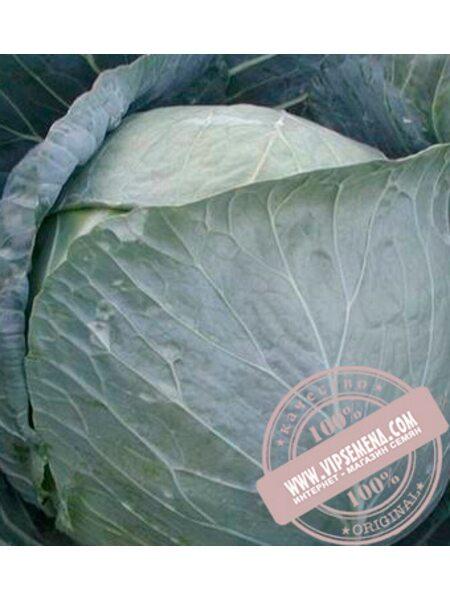 Браво F1 (Bravo F1) семена белокочанной, средней капусты Clause, оригинальная упаковка (2500 семян)