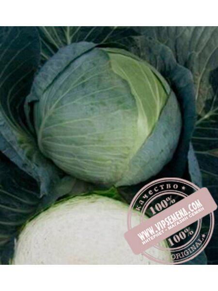 Центурион F1 (Centurion F1) семена белокочанной, средней капусты Clause, оригинальная упаковка (2500 семян)