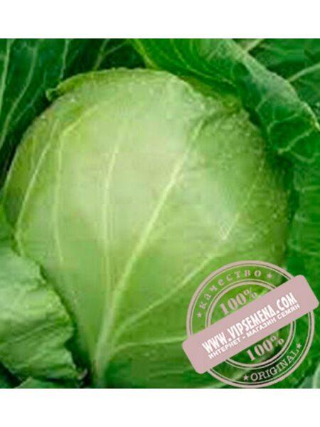 Оракл F1 (Orakl F1) семена белокочанной, ранней капусты Clause, оригинальная упаковка (1000 семян)