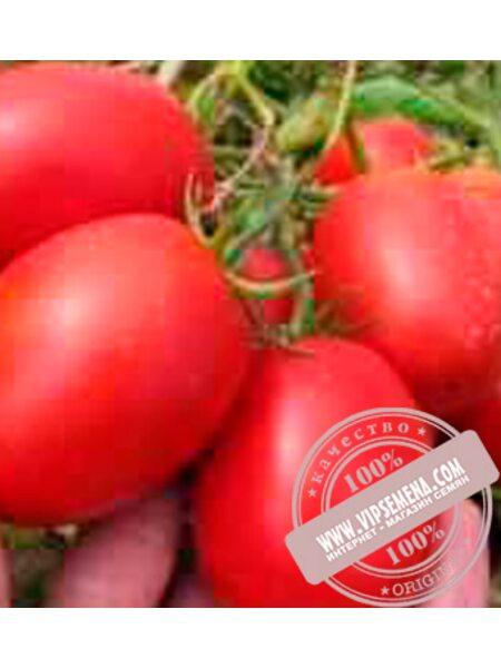 Пьетра Росса F1 (Petra Rossa F1) семена томата дет. для переработки, Clause, оригинальная упаковка (1000 семян)