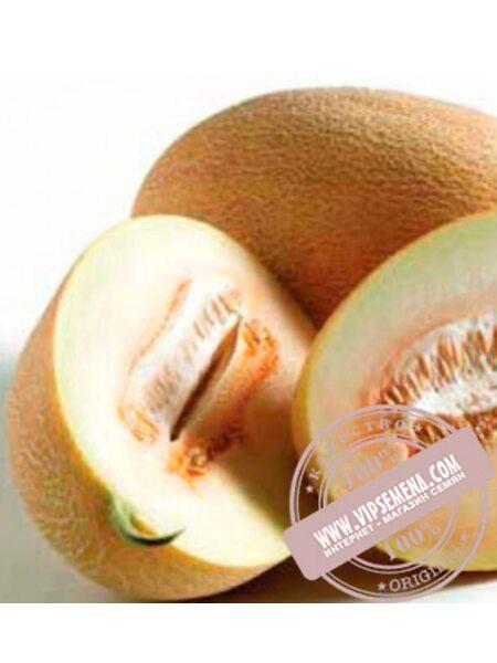 Соккар F1 (Sokkar F1) семена дыни тип Ананас Nunhems, оригинальная упаковка (1000-семян)
