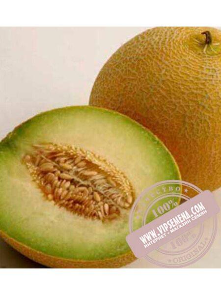Воллер F1 (Waller F1) семена дыни тип Галлия, оригинальная упаковка (1000-семян)