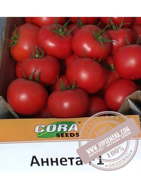 Anneta CRX 78288 F1 (Анета f1)  семена томата индет. красного Cora Seed, оригинальная упаковка (1000семян)