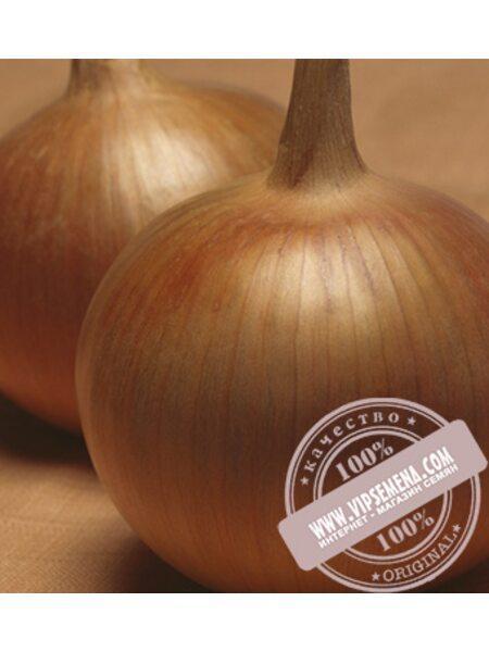Бонус F1 (Bonus F1) семена лука репчатого Takii Seeds, оригинальная упаковка (250000)