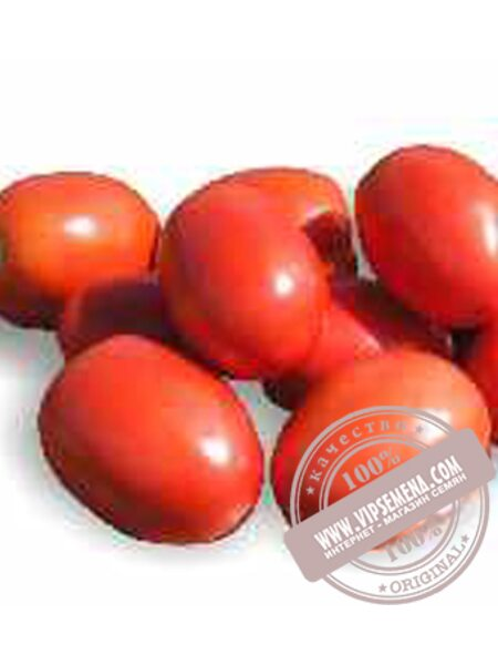 Рио Гранде F1 (Rio Grande F1) семена детерминантного томата Griffaton, оригинальная упаковка (250 грамм)