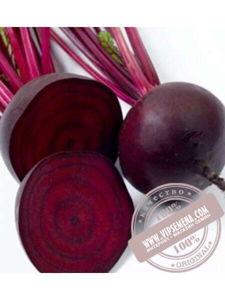 Детройт (Detroit) семена свеклы стловой Griffaton, оригинальная упаковка (5кг)