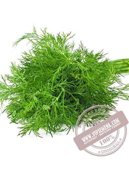 Дилл (Dill) семена укропа Griffaton, оригинальная упаковка (500 грамм)