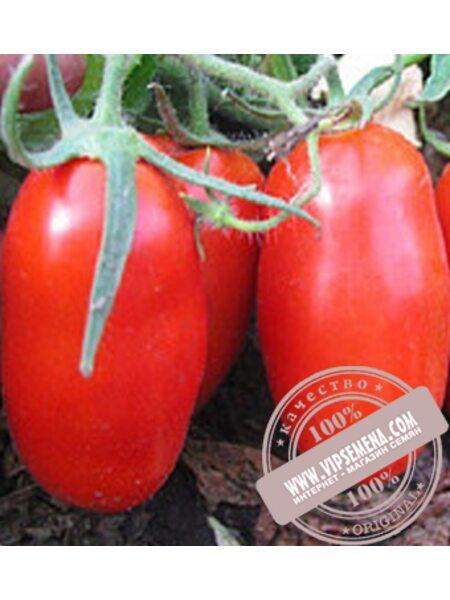 Гледис F1 (Gledis F1) семена детерминантного томата Esasem, оригинальная упаковка (1000 семян)