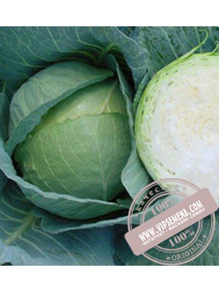 Грин Бой F1 (Green Boy F1) семена капусты Sakata, оригинальная упаковка (1000 семян)