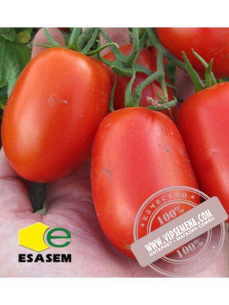 Инкриз F1 (Inkriz F1) семена детерминантного томата Esasem, оригинальная упаковка (1000 семян)