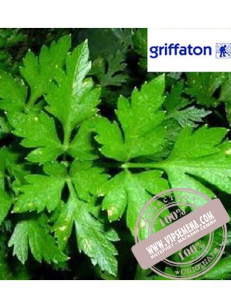 Итальянский Гигант (Italian Gigant) семена петрушки Griffaton, оригинальная упаковка (500 грамм)