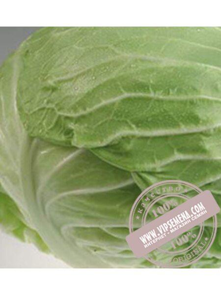 Монро F1 (Monro F1) семена капусты Sakata, оригинальная упаковка (1000 семян)