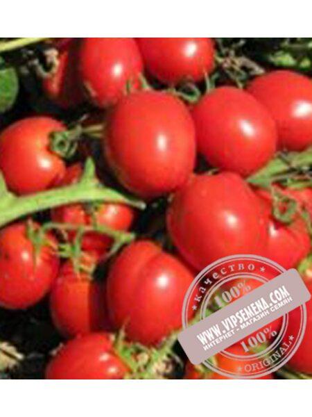 Реди F1 (Redi F1) семена детерминантного томата Esasem, оригинальная упаковка (1000 семян)