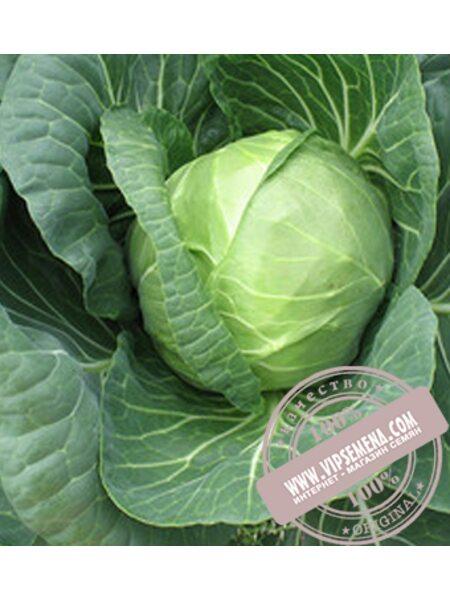ТRC-1 (Нозоми) F1 (Nozomi F1) семена капусты Sakata, оригинальная упаковка (1000 семян)