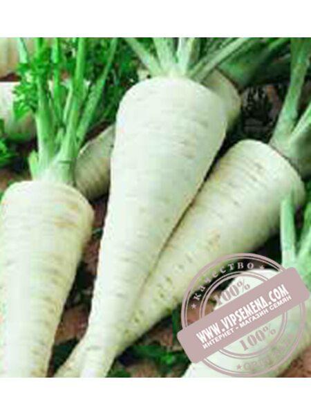 Алба (Alba) семена корневой петрушки Moravoseed, оригинальная упаковка (100 грамм)