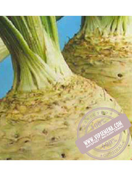 Албин (Albin) семена корневого сельдерея Moravoseed, оригинальная упаковка (5000 семян)