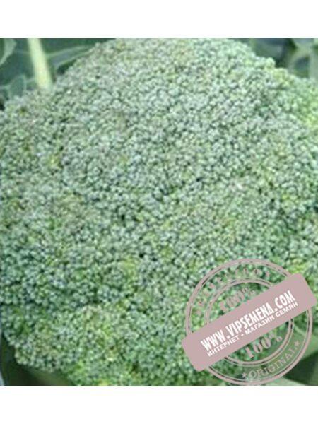 Аполена F1 (Apolena F1) семена капусты брокколи Moravoseed, оригинальная упаковка (2500 семян)