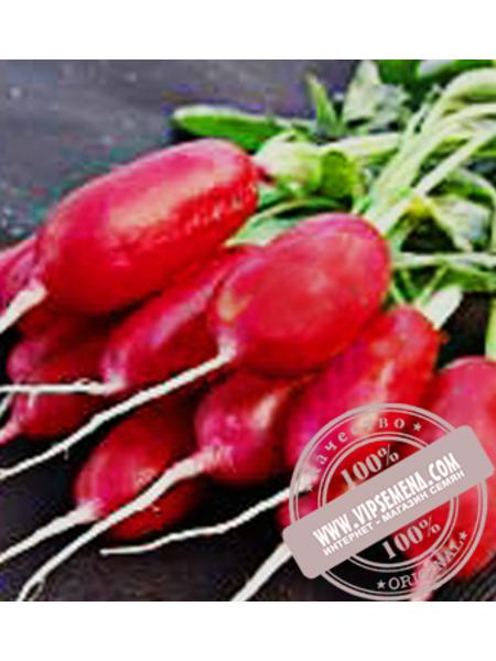 Форум (Forum) семена редиса Moravoseed, оригинальная упаковка (250 грамм)